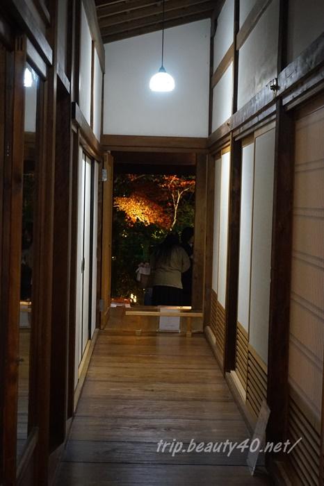 京都 圓徳院ライトアップ (13)2
