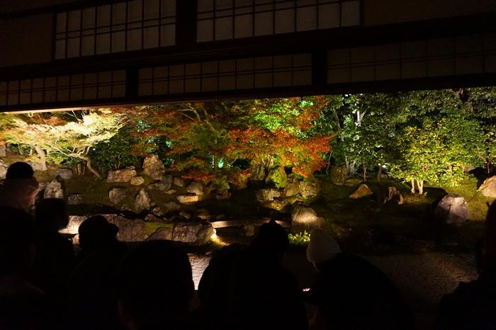 京都 圓徳院ライトアップ (19)2