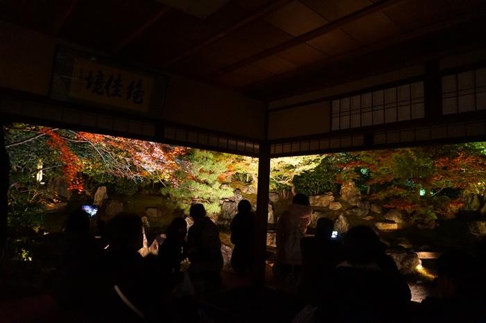 京都 圓徳院ライトアップ (16)2